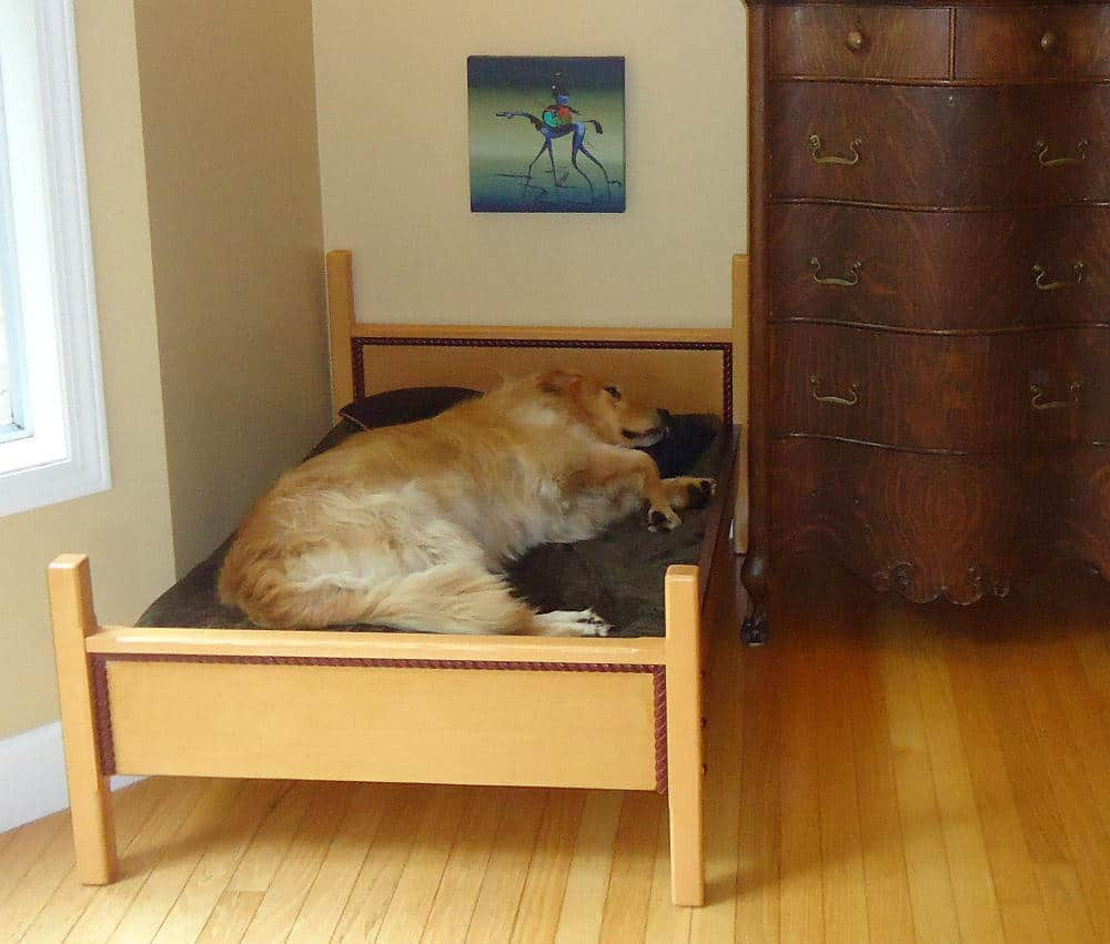 20 Uber Chic Dog Beds For A Modern Home