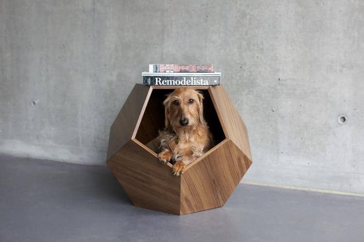 dog cave by pup and kit doubles as a side table side table or dog den the geometry is what really caught my eye it has a pentagon opening and sides