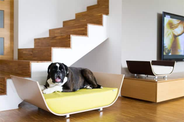The Modern Bed By Max Design Studio Is A Sleek And That Features Plexiglas Panel On Its Back To Keep Drafts Off Of Our Pooches Foamy