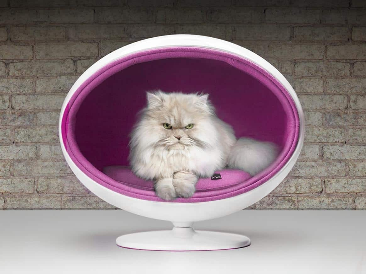 Stupendous Chic And Cozy Cat Beds 20 Modern Ideas Interior Design Ideas Clesiryabchikinfo
