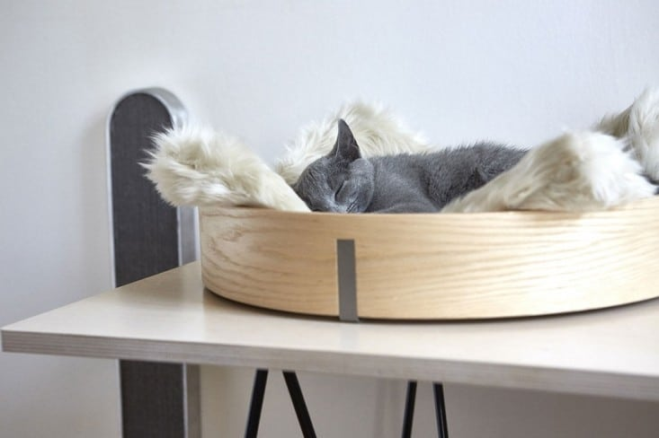 Chic and cozy cat beds 20 modern ideas - Contemporary cat furniture ideas ...