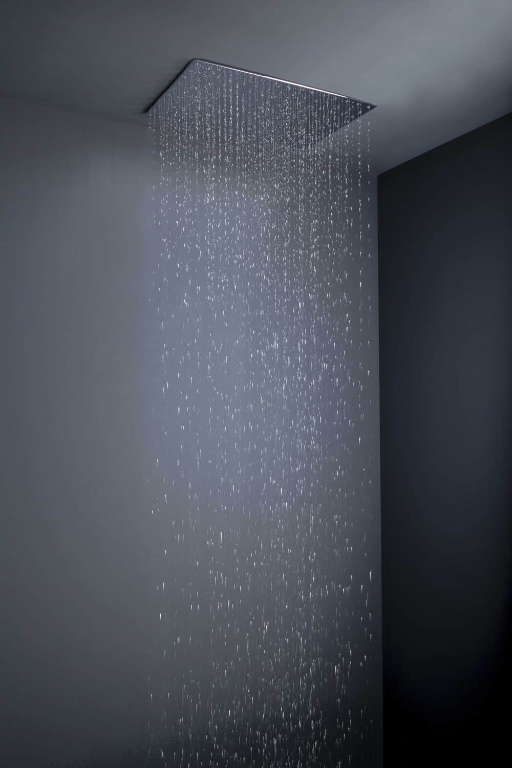 View In Gallery Flush Mount Rain Shower Heads Tender