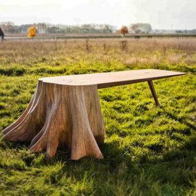 It Took 8 Months to Uproot Tree Stump and Form the Square Root Table