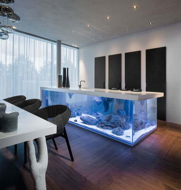 And Then We Have The Stone Kitchen Countertop That Doubles As An Aquarium  Roof. Weu0027re Not Going To Give You The Cons Here, You Surely Can Figure  Those Out.