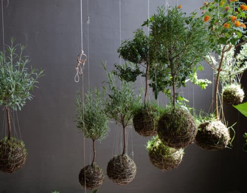 String Gardens: Magical Spheres of Modern Art for Your Home