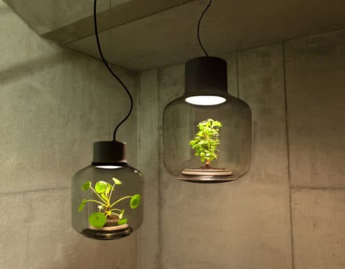 Self Contained EcoSystems: Amazing Light Fixtures with Live Plants Inside