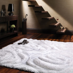 3D Area Rugs – Carpet Terra by Stepevi