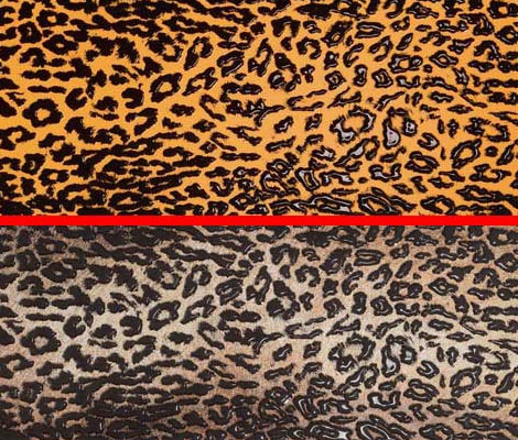 animal-print-tile.jpg & Animal Print Decor - latest patterns and trends