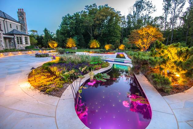 award-winning-stradivarius-violin-pool-cipriano-landscape-design-8-pond-plants.jpg