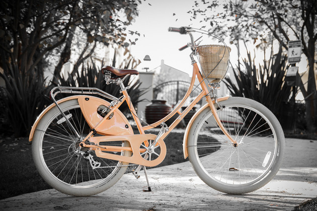 peace-bicycles-step-thru.jpg