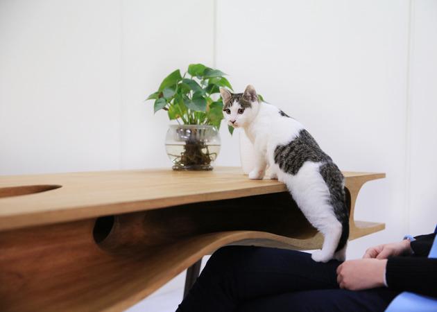 catable-purr-fect-combination-desk-cat-hangout-5.jpg