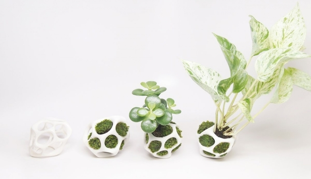 modular-moss-planter-kickstarter-project-cella-by-ecoid-15.jpg