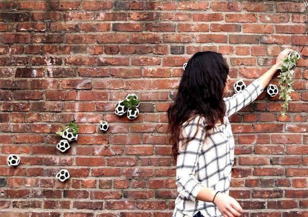 modular moss planter kickstarter project cella by ecoid 2 thumb 630xauto 40488 Modular Moss Planters: Cella by Ecoid on KickStarter