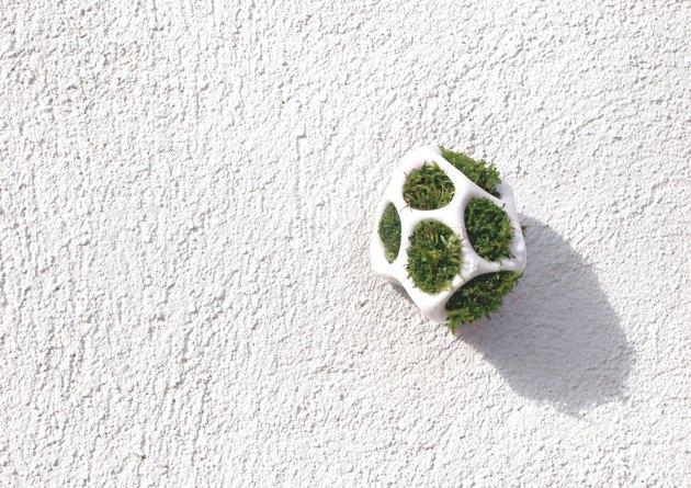 modular-moss-planter-kickstarter-project-cella-by-ecoid-8.jpg
