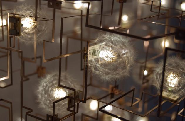 dandelion-decor-studio-drift.jpg