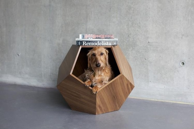 18-dog-beds-you-your-dog-love.jpg