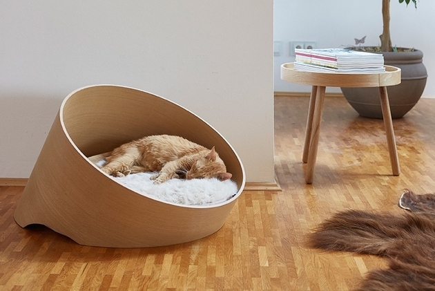 1 chic cosy cat beds modern homes thumb 630xauto 60029 Chic and Cozy Cat Beds: 20 Modern Ideas