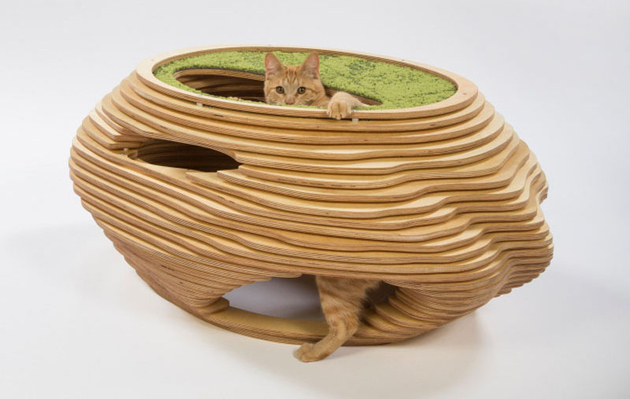 1 la architects design cat shelters charity thumb 630xauto 66160 LA Architects Design Cat Shelters for Charity
