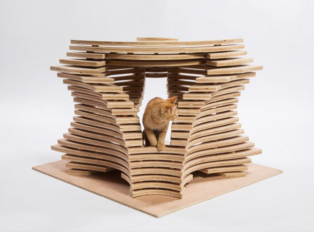 2 la architects design cat shelters charity thumb 630xauto 66162 LA Architects Design Cat Shelters for Charity