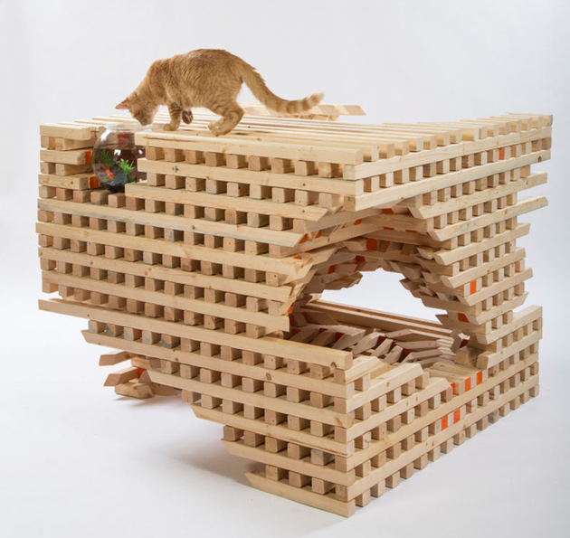 7-la-architects-design-cat-shelters-charity.jpg