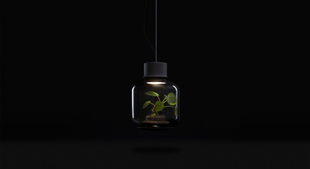 plant-lamps-with-natural-light-awesome-10.jpg