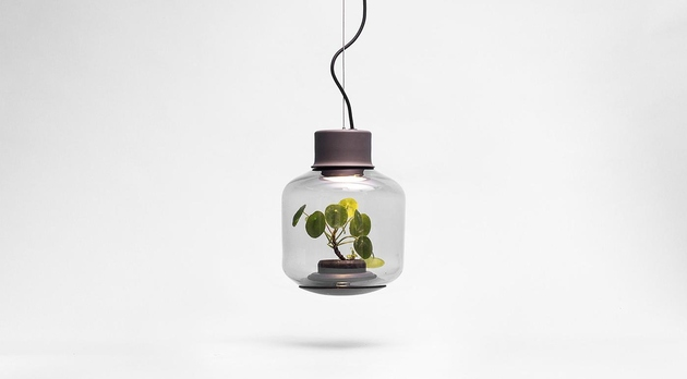 plant-lamps-with-natural-light-awesome-111.jpg