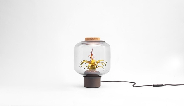 plant-lamps-with-natural-light-awesome-112.jpg