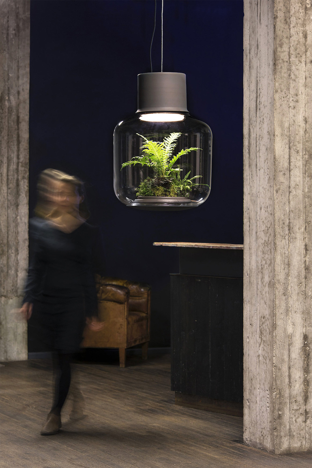 plant-lamps-with-natural-light-awesome-1132.jpg