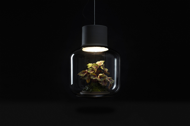 plant-lamps-with-natural-light-awesome-9.jpg