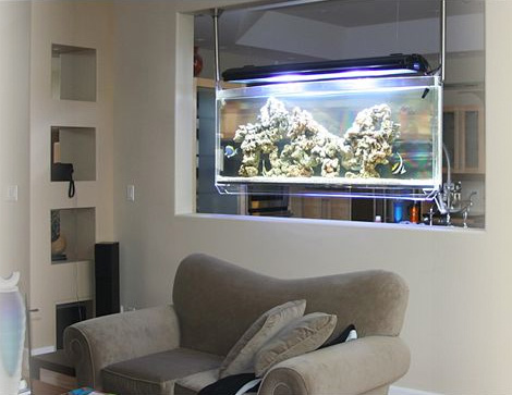 ceiling mounted aquarium asp spacearium Ceiling Mounted Aquarium by Aquarium ASP   the Contemporary Spacearium