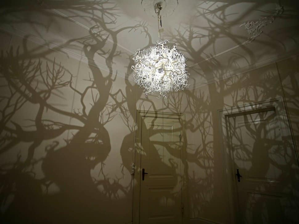 Chandelier Creates a Forest of Tree Shadows