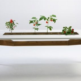 Outdoor Table Rosis from Escho lets you cultivate flowers and plants