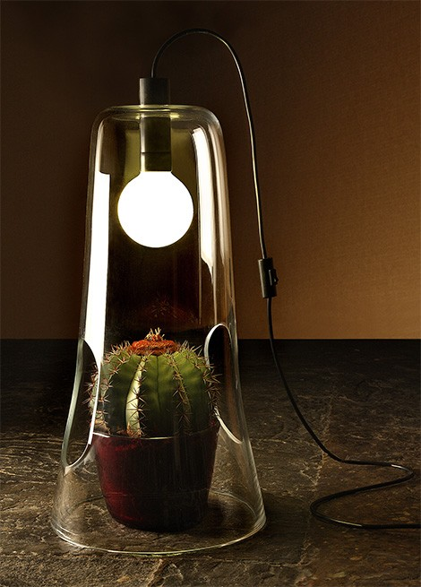 formia table lamp microcosmo Microcosmo Table Lamp in Murano glass from Formia functions as a mini greenhouse!