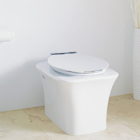 Fountainhead Toilet from Kohler with Eco-friendly Flush