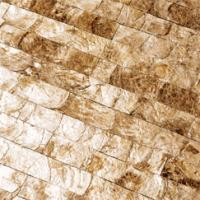 maya romanoff mother of%20pearl tile Maya Romanoff Mother of Pearl Tiles
