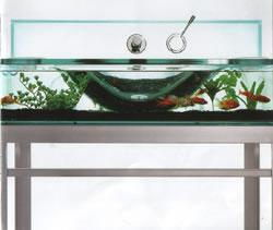Open Kristallux Moody Aquarium Sink – Fish or Zen?