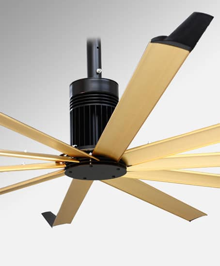 Oversized Ceiling Fan Modern Isis Fans