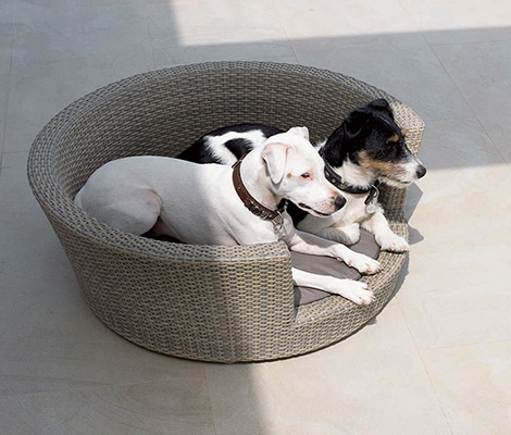 raucha03284 Rausch Classics Outdoor Furniture for everyone, even pets