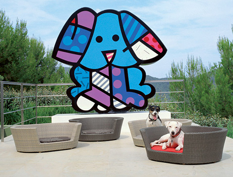 Eden Dog lounges