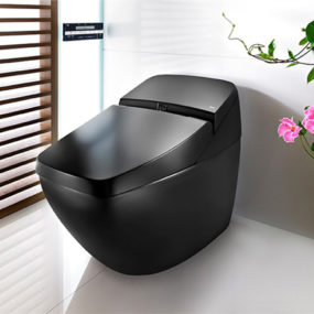 Sleek Toilet by Roca is also hi-tech