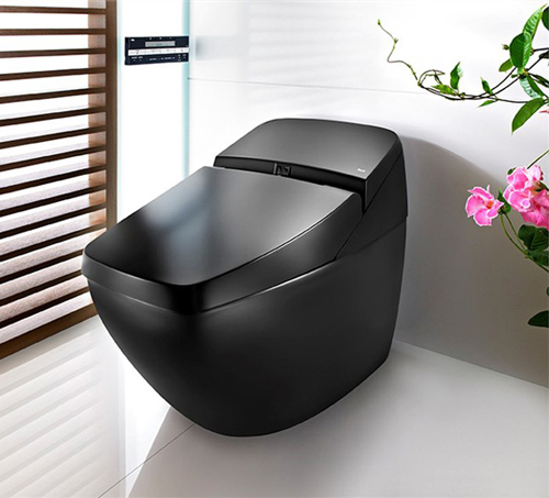 toilet lumen avant boca 1 Sleek Toilet by Roca is also hi tech