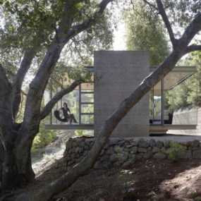 3 Tea Houses Built to Preserve Live Oak Root Systems