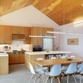 Barn Style Home and Studio feature Douglas-fir Ceilings and Trim