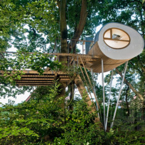 Backyard Escape: Elliptical Pod Tree House