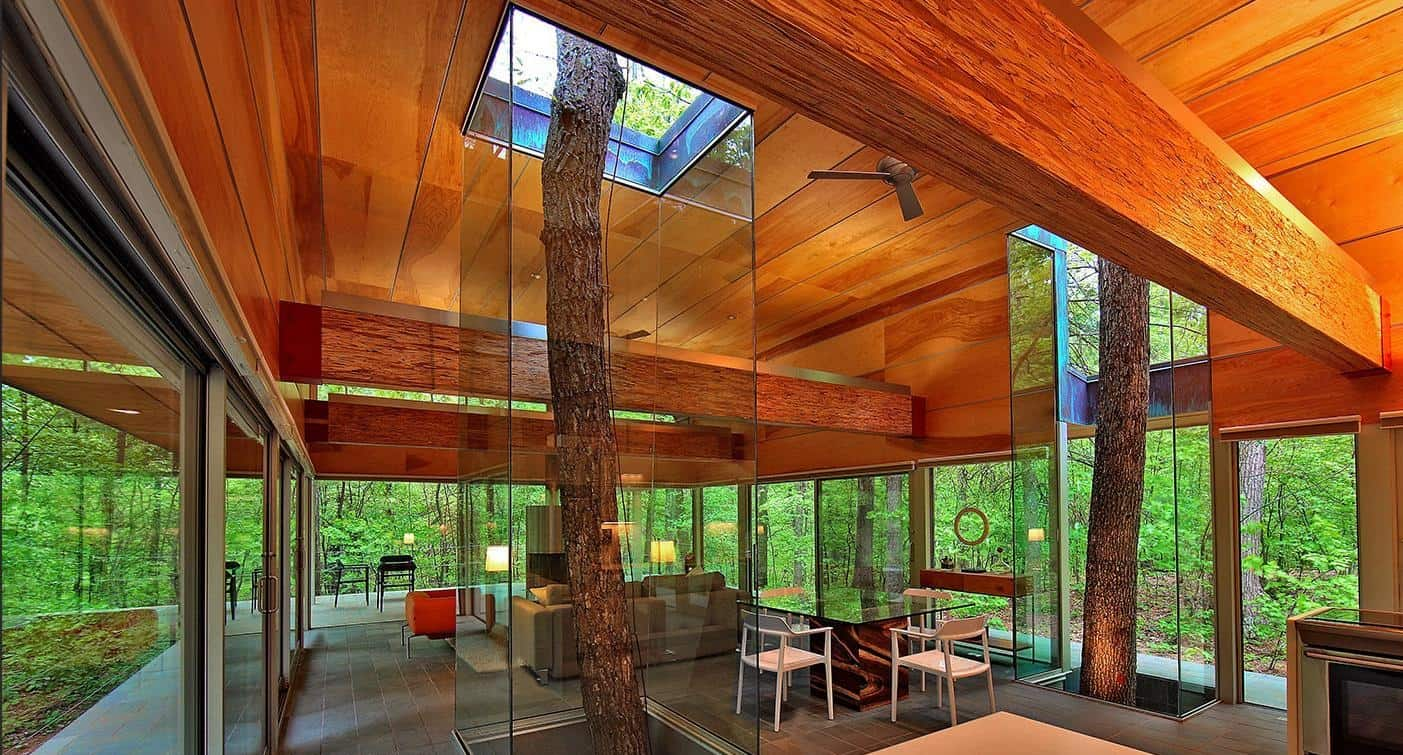 Homes Built Around Trees 13 Creative Examples