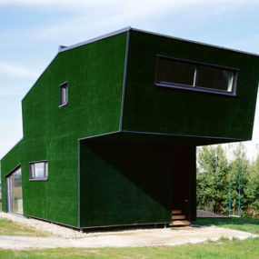 Grass Covered House in Austria … really?