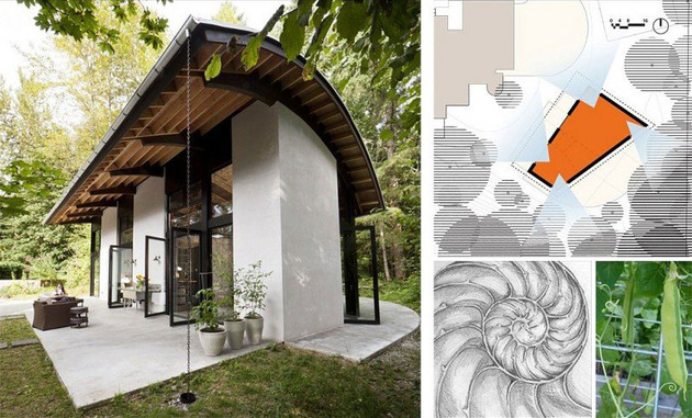 shell-shocked-nautilus-inspired-concrete-live-and-work-home-10.jpg