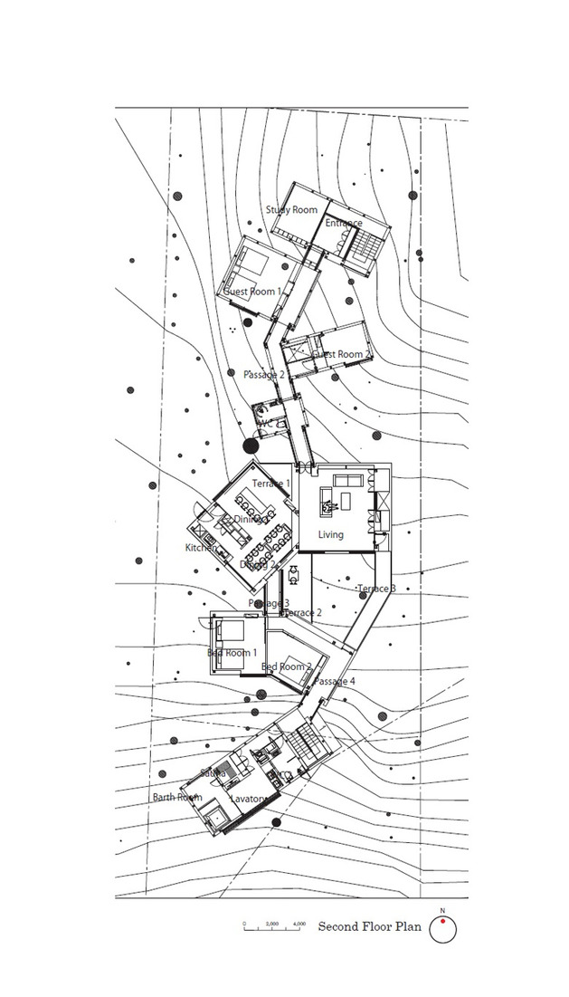 skewed-linear-house-plan-integrates-trees-and-architecture-20.jpg