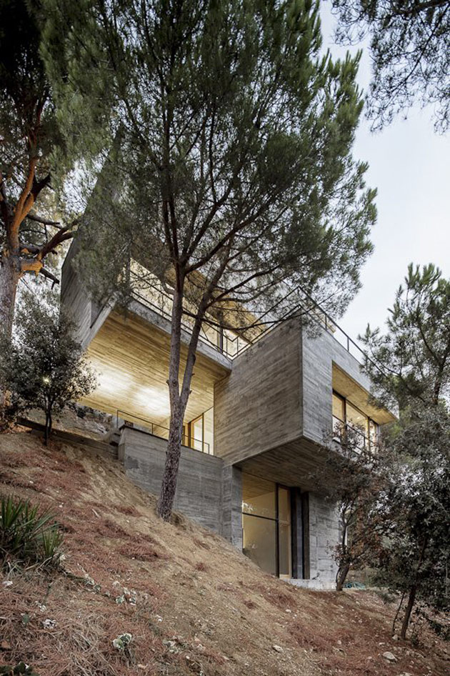 Steep slope house design goes vertical just like trees for What goes into building a house
