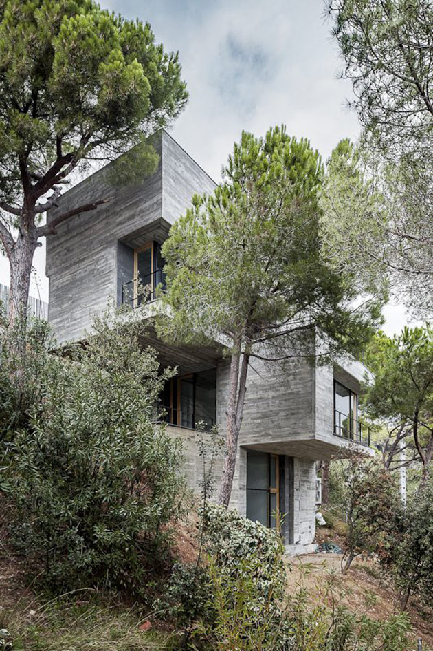 vertical house with branched out balconies inspired by trees 2 thumb 630x946 12163 Steep Slope House design goes vertical, just like trees